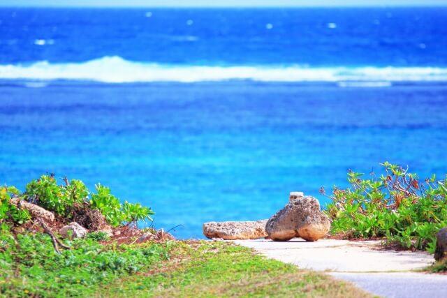 hawai omiyage ninki